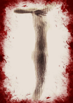 T.NakedAndBloody